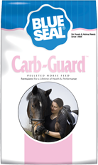 Blueseal Carb–Guard image