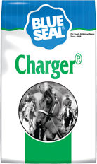 Charger image