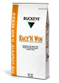 Race 'n Win image