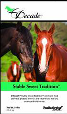 Poulin Decade Stable Sweet Traditions  image