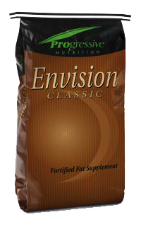 Envision Classic image