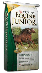 Equine Junior image