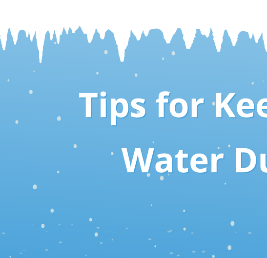 Tips for Keeping Horses Hydrated During Cold Weather